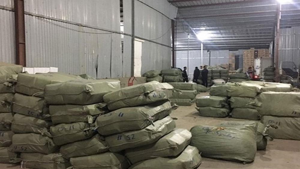 Hơn 100 tấn dược liệu nhập lậu ngụy trang bằng hoa quả khô